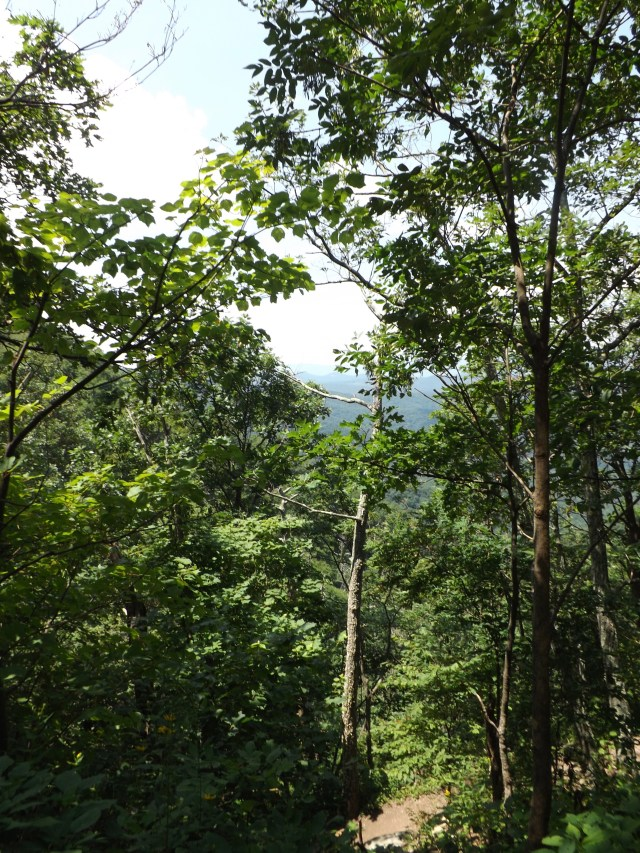 Shenandoah National Park: Views From the AT New Loft Mountain