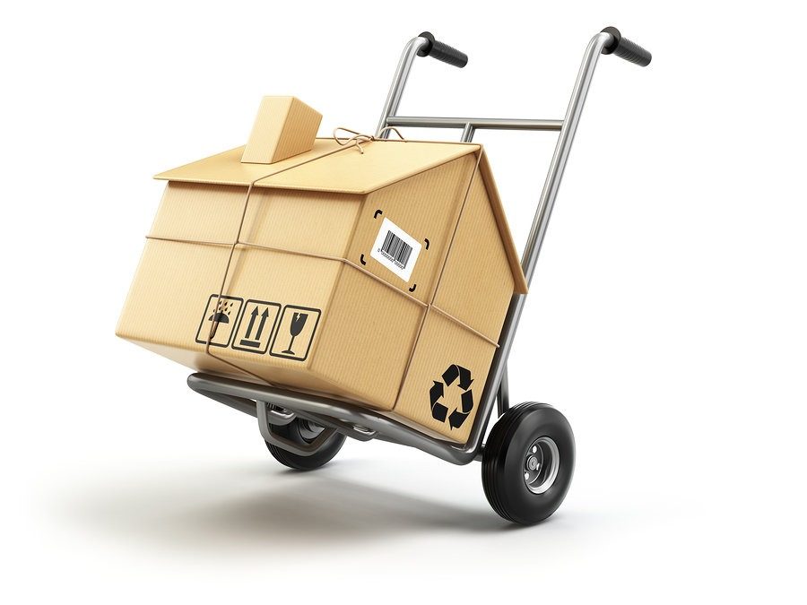 Moving Day Safety Tips New York