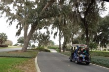 Some paths are developed for golf carts