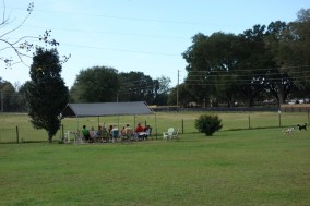 The dog park is a social place for the retired dog owners who live here