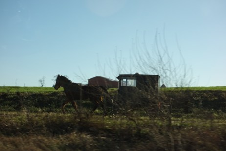 Amish cart along the highway