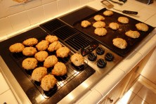 Oatmeal cookies, in absence of chocolate chips