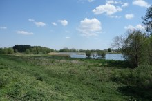 The area between the river and the second dyke. It has been created as overflow from the Schelde during heavy rainfall