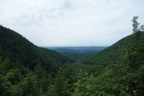 Viewpoint in Bash Bish Falls State Park