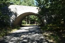 Biking under the Park Loop Road