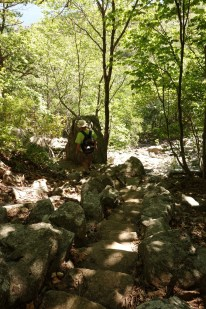 There are still a lot of boulders on the way down, but the trail is shady, downhill and does not have ladders!