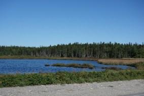 Lake at the seawall