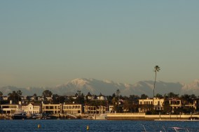 Snowy mountains in the distance, in stark contrast with the sole palm tree