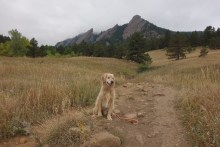 Oscar and I hike at The Flatirons, Boulder while Mark does some product testing for work
