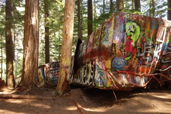 A train derailed close to this spot. Some of the cars were moved deeper in the forest, where they became art exhibits.