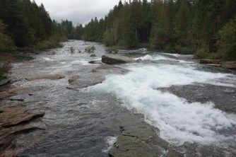 Nymph Falls, where we saw a few salmon jump the rapids