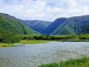 Pololū Valley Hike
