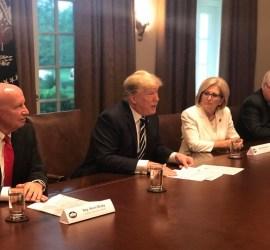 D. Trump and D. Black
