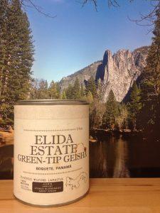 Elida Estate Green Tip Geisha from Bajareque Coffee House