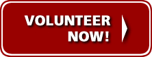 volunteer-now-btn
