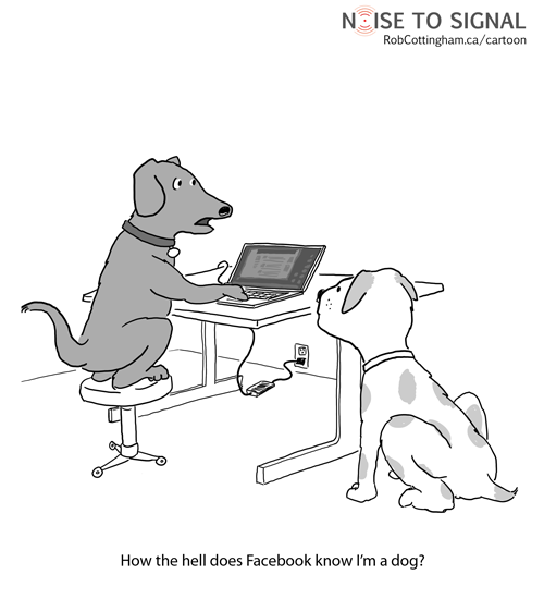 (a dog looking at a laptop) How the hell does Facebook know I'm a dog?