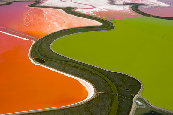 Salt Pond 092