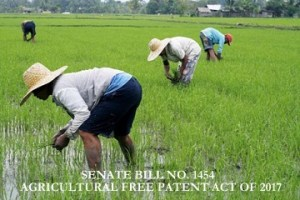 TIME TO PLANT. Farmers plant rice at Barangay Midpapan in Pigcawayan, North Cotabato. Pigcawayan is one of the rice-producing towns in the province. AKP Images/ Keith Bacongco