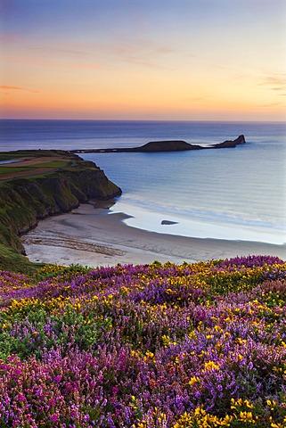 Rhossili Bay, Worms End, Gower Peninsula, Wales, United Kingdom, Europe