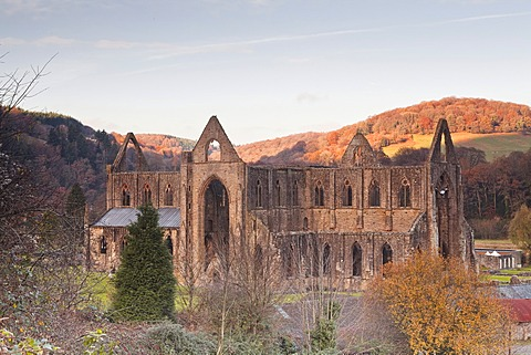 Tintern Abbey, founded by Walter de Clare, Lord of Chepstow, in 1131, Tintern, Monmouthshire, Wales, United Kingdom, Europe