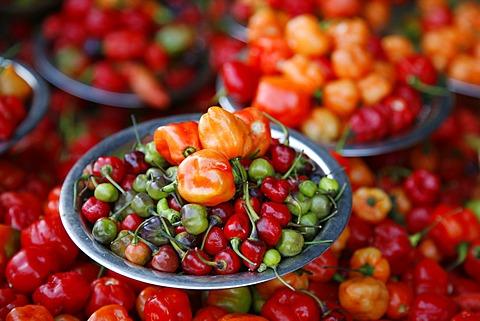 Peppers at Sao Joaquim market, Salvador (Salvador de Bahia), Bahia, Brazil, South America
