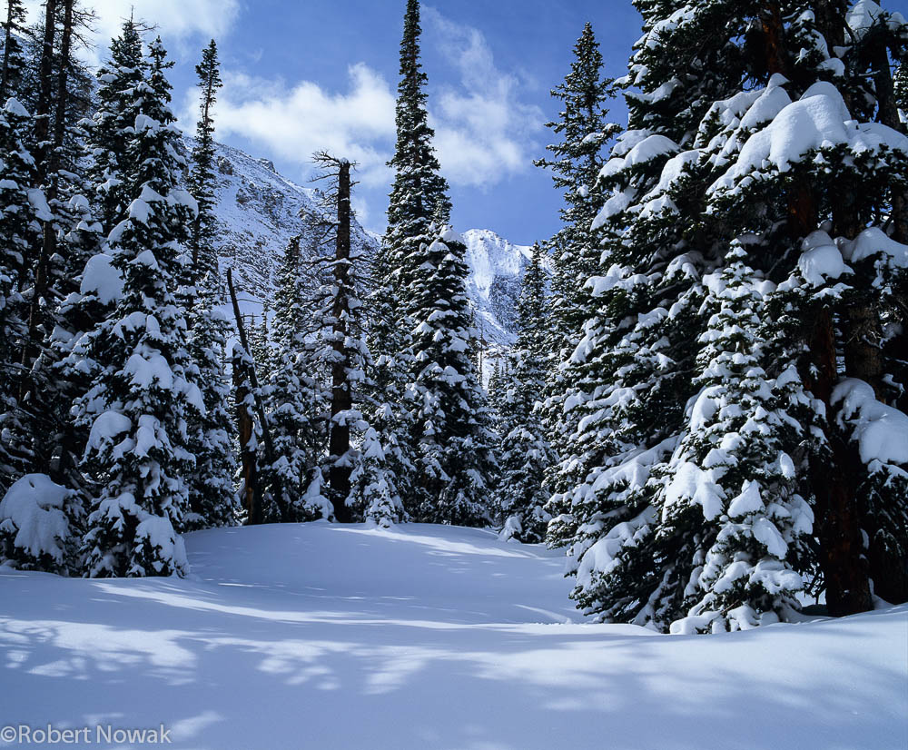 Christmas Wallpaper Snow Falling Winter Landscape At Loch Vale Rocky Mountain National