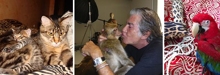 Roberto Cavalli with pets