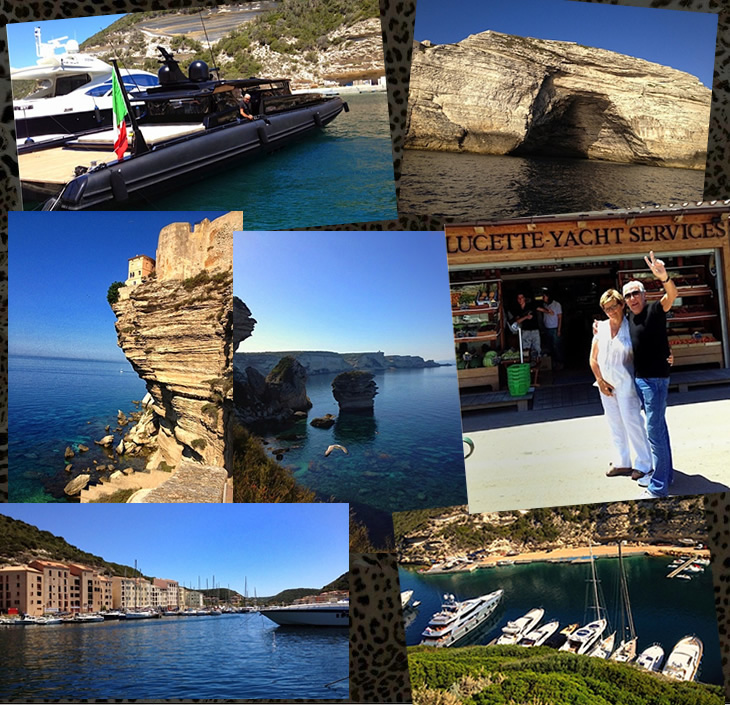 Summer has finally arrived... - Roberto Cavalli Blog