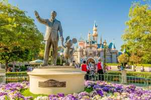 Atender do jeito Disney: cadeia de excelência no escritório contábil