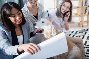 Impacto da geração millennials no setor contábil