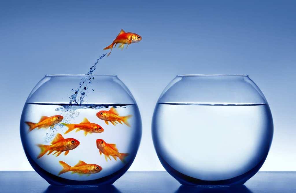 Conheça os alguns indicadores de desempenho para escritórios contábeis