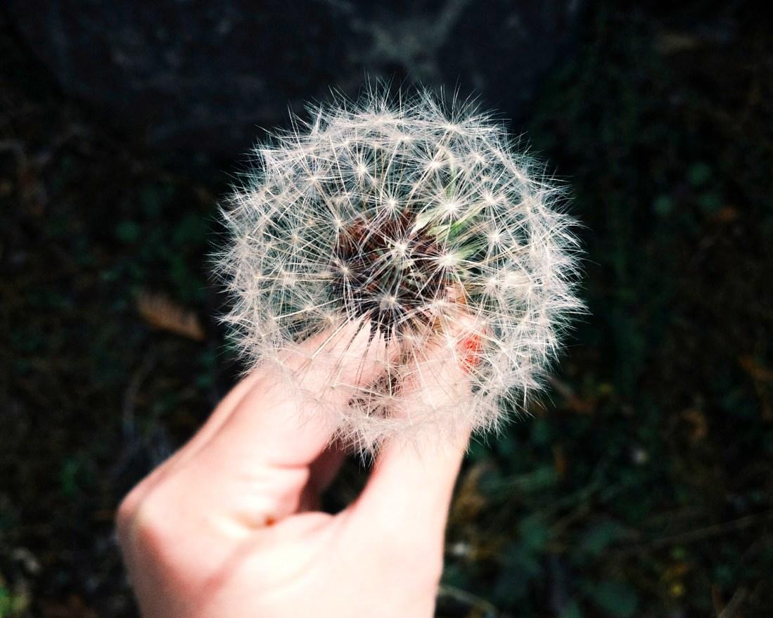 Crowdfunding, dal mito dei soldi facili all''industria del cambiamento