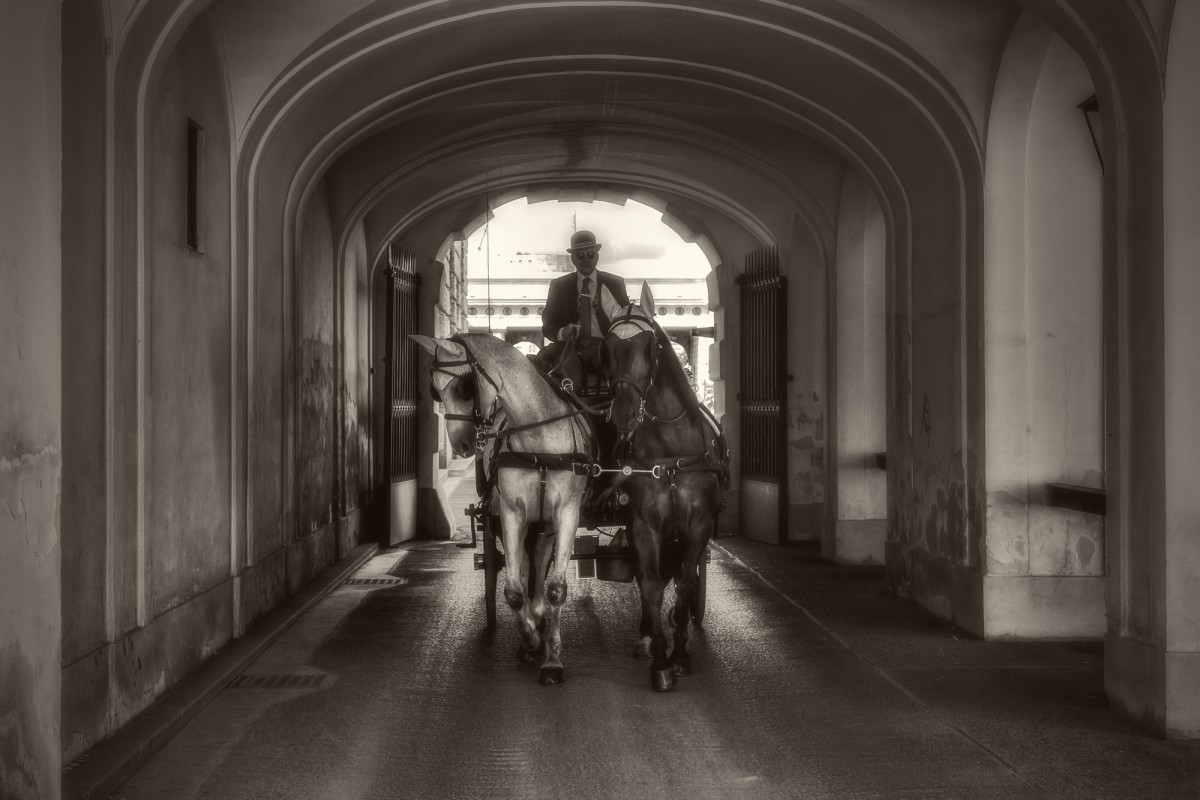 carriage under the arcade