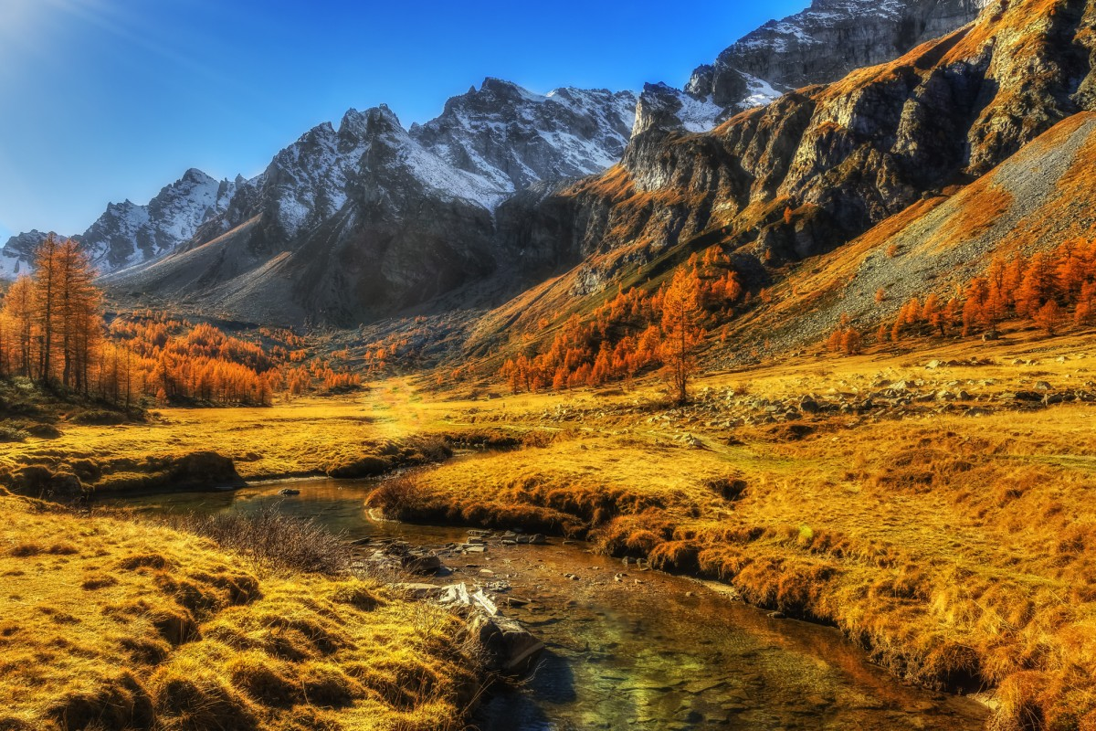 mountain stream and fall colors