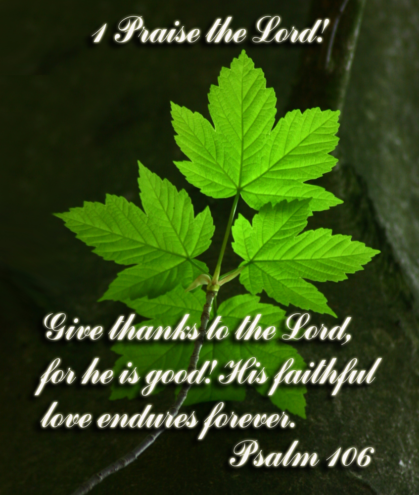 april showers green leaves spring psalm 106