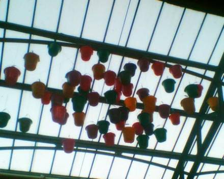 Buckets on the Ceiling, at Out of the Blue