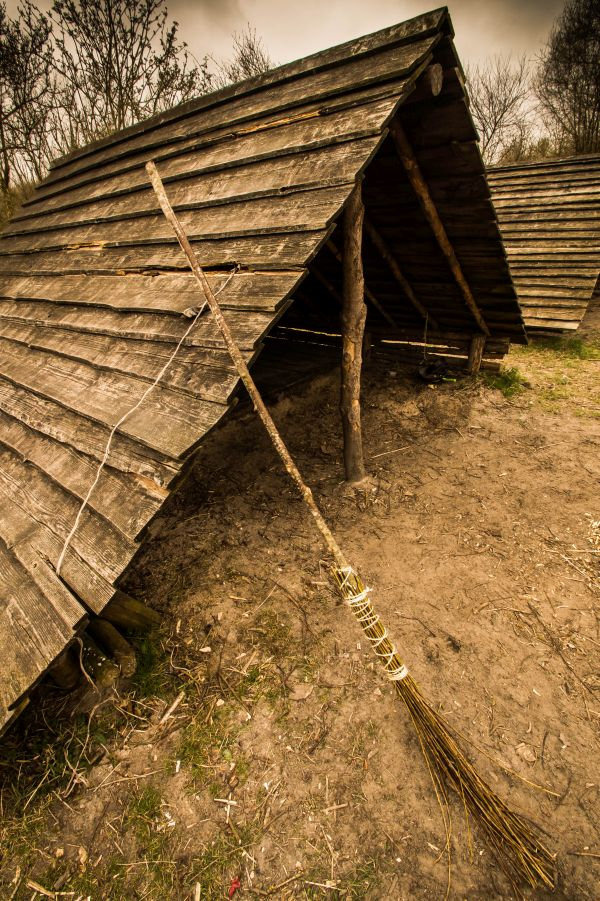 Camping Campanula