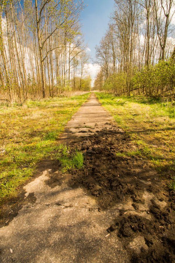 Trailrun, Horsterwold, Zeewolde