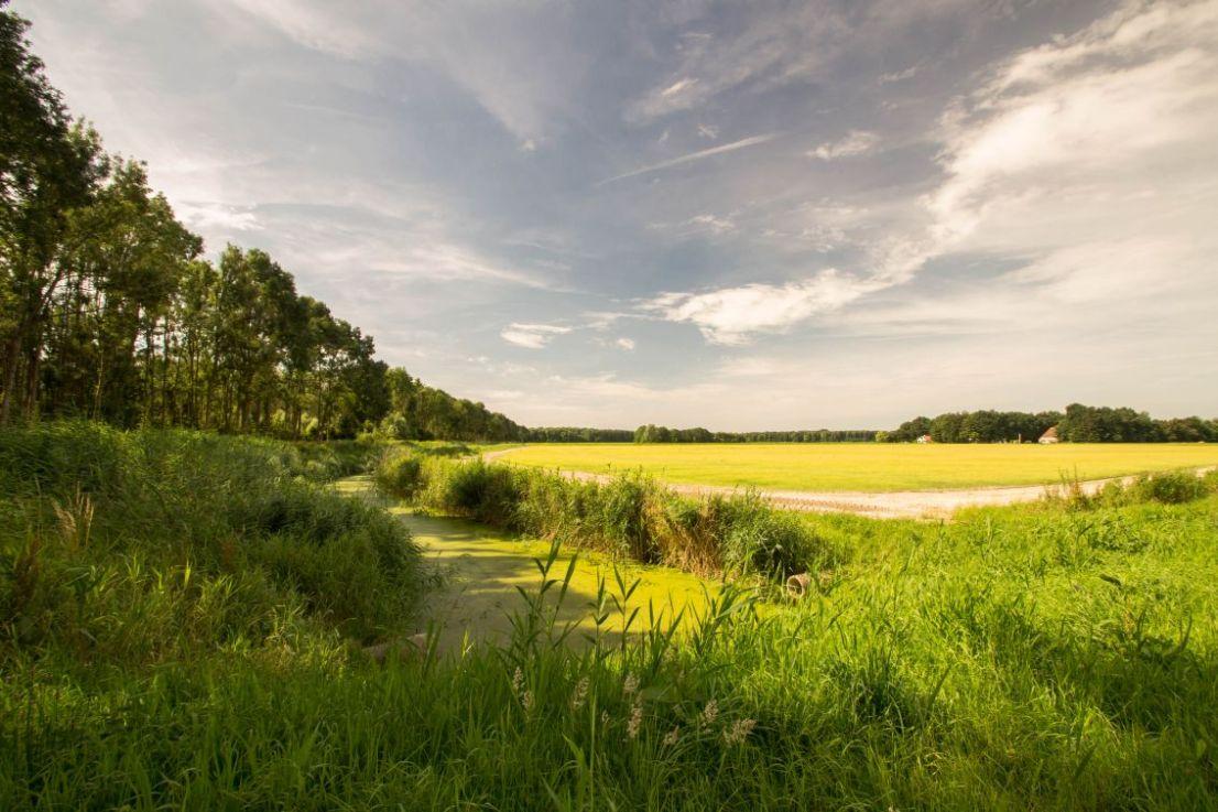 De Revetocht in Flevoland, Dronten