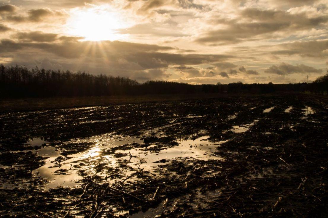 Drassige aarde in Drenthe