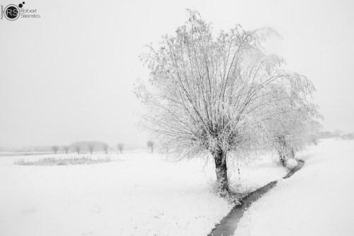 RST_Sneeuw-december 10, 2017-13