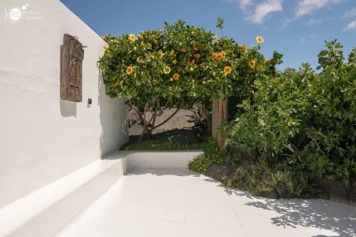 RST_Lanzarote-12-20180604