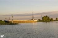 RST_Rijnhaven_uiterwaarden-09 mei 2017-11