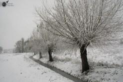 RST_Sneeuw-december 10, 2017-12