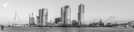 RST_Rotterdam-2018_1