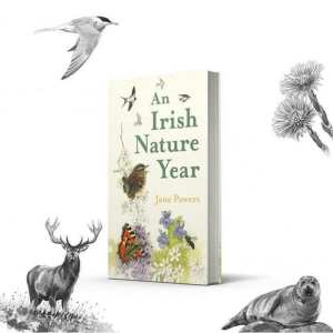 An Irish Nature Year