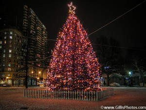 Boston Common Christmas 2005