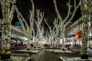 Quincy Market Christmas Lights and Trees