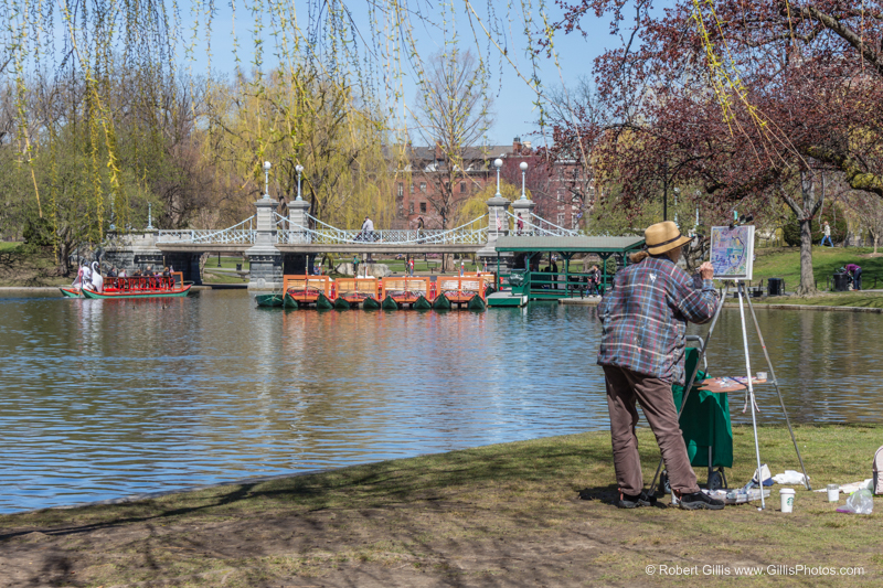 Boston Public Garden and Artist 9760