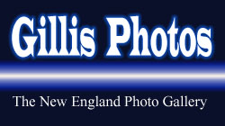Gillis_Photos